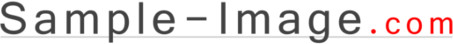 Sample-Image.com Logo